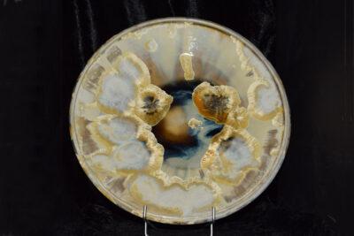 Coupe à fruits en porcelaine jaune soleil 31 cm